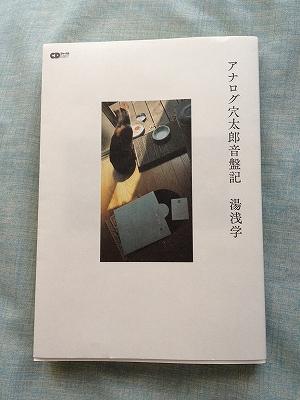 s-analog2.jpg